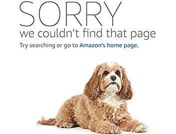 Why Does Amazon Sell Holocaust-Denying Authors Next To Real Historians?