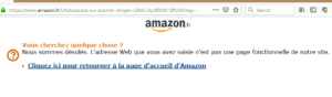 Amazon France retire un livre négationniste de son site