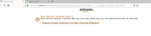 Amazon a supprimé les liens de livres négationnistes